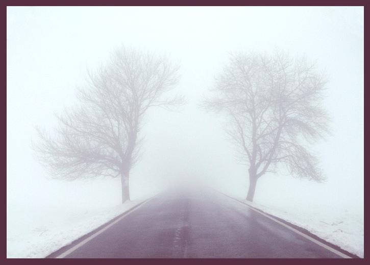 Fenomenos en la troposfera :3 Niebla